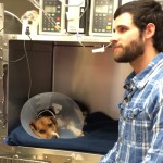 Happy Tails – Weekly Happy Dog News