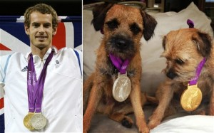 Wimbledon Champion Andy Murray Rescues Dog