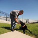 Marine Reunited with Military Dog