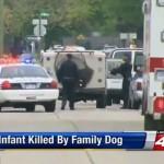 Dog Kills Infant in Michigan