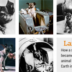 Laika: First Animal to Orbit Earth