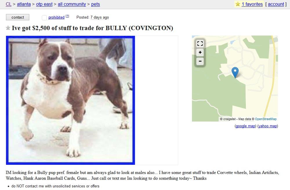 Craigslist Dog Ads Buyer Beware Puppy Leaks