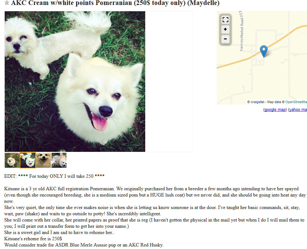 craigslist dog trade