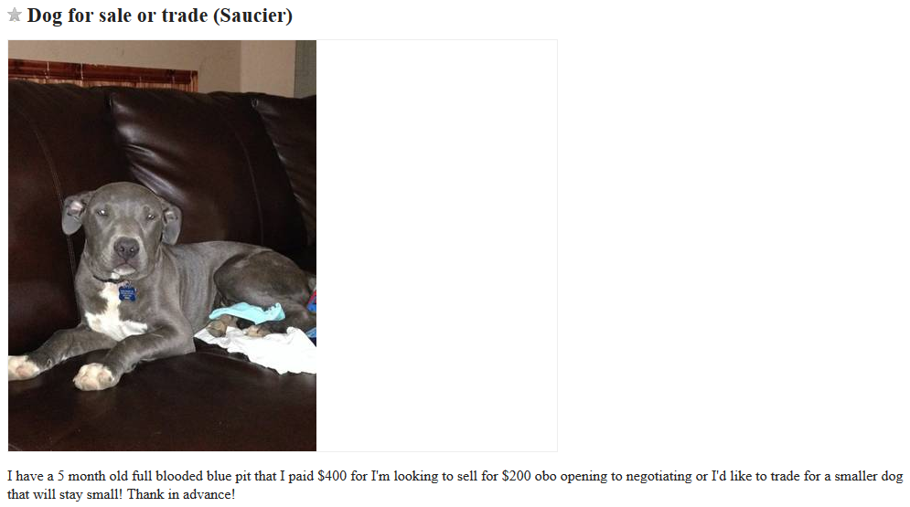 Craigslist Dogs For Trade - Puppy Leaks
