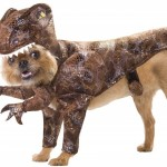 Help Us Choose A Dog Costume