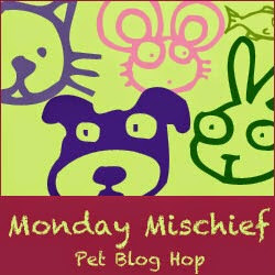 monday blog hop