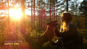 hunting season safety tips for your pet