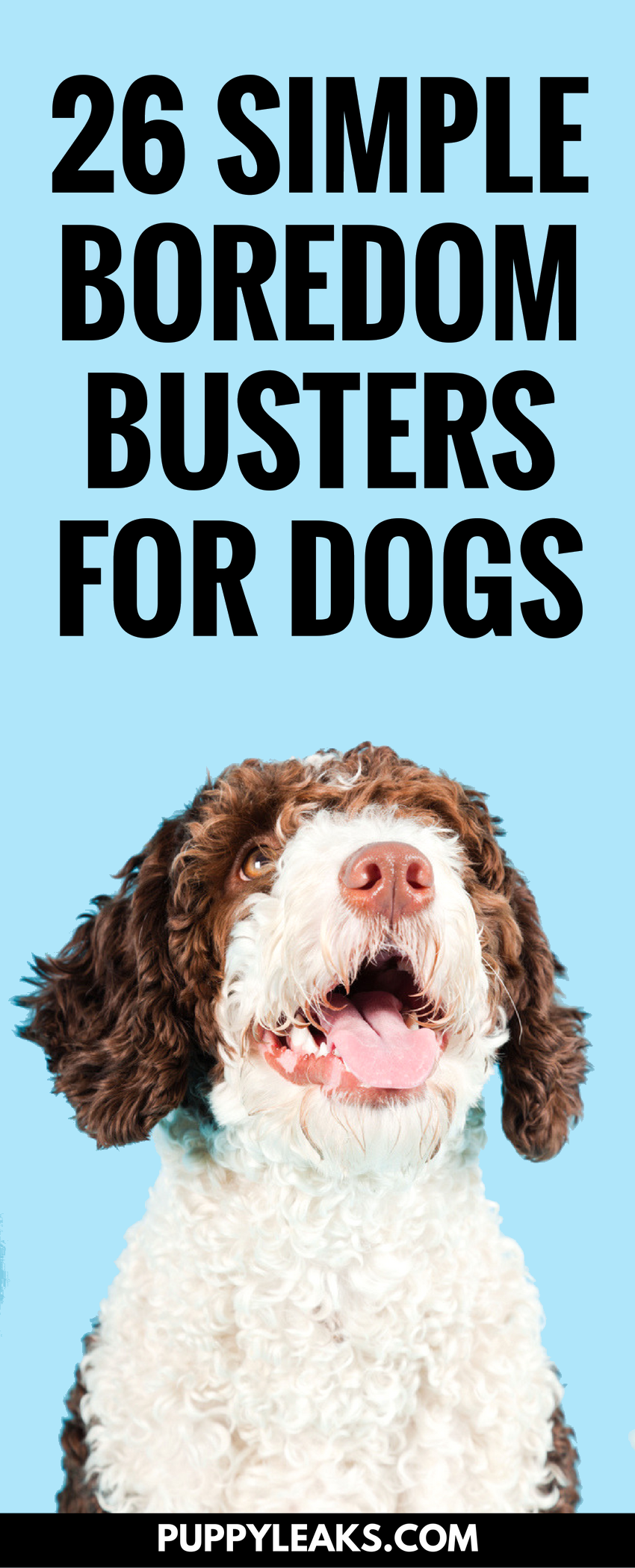 Is your dog bored? Need some simple ways to keep your dog busy and entertained? Check out our list of 26 quick and simple ways to relieve dog boredom. These boredom busters will provide your dog with plenty of mental stimulation and exercise. #dogs #dogtips #dogcare #dog #lifehacks #doglovers #dogadvice