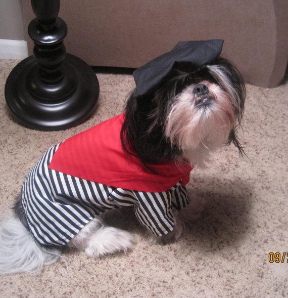 best halloween dog costumes