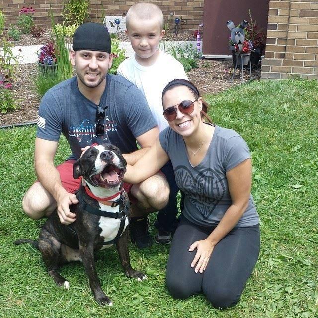 shelter dogs smiling adoption