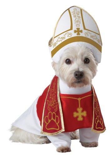 30 Amazing Dog Costumes