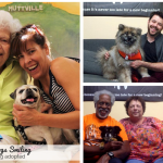 Senior Dogs Smiling After Being Adopted