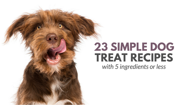 23 Simple Dog Treat Recipes: 5 Ingredients or Less