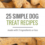 19 Simple Dog Treat Recipes – Five Ingredients or Less