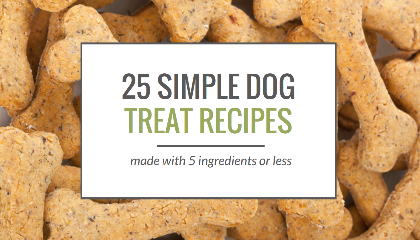 25 Simple Dog Treat Recipes 5 Ingredients or Less Puppy Leaks