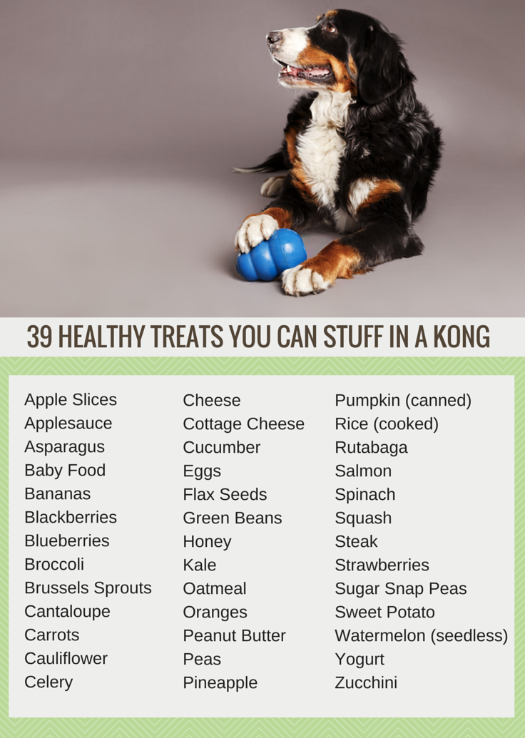 39 Healthy Treats You Can Stuff In A Kong Puppy Leaks