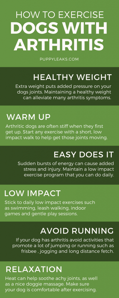 How to Exercise a Dog With Arthritis. Exercising a dog with arthritis or other mobility issues can be tricky; too much exercise can cause pain, and too little can make the condition worse. Here's some basic tips on exercising a dog with arthritis and finding the right balance.