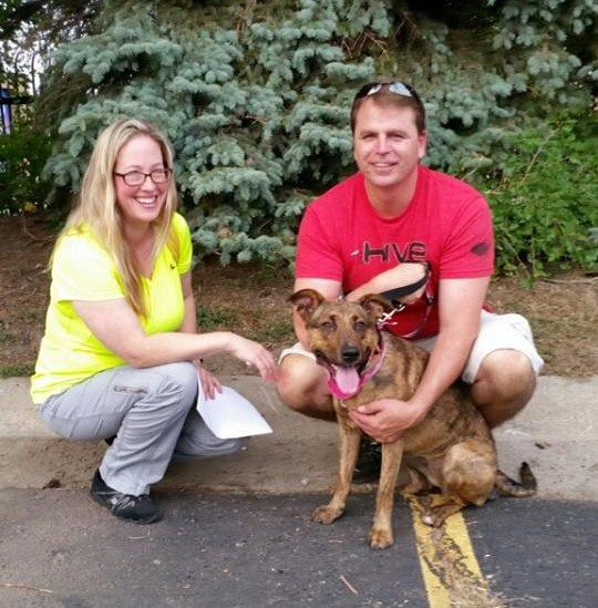 Shelter Dogs Smiling Adopted