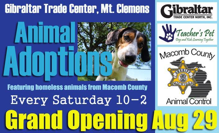 Pet Adoption in Macomb County
