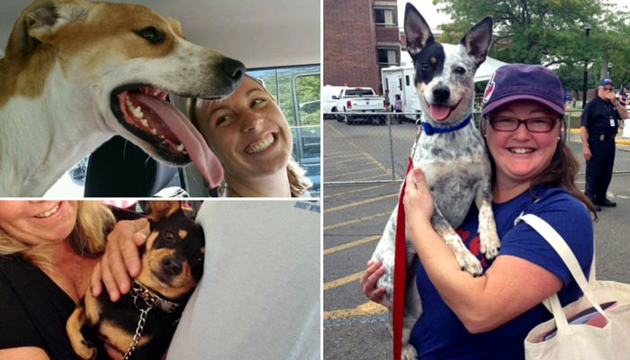 Shelter Dogs Smiling After Being Adopted