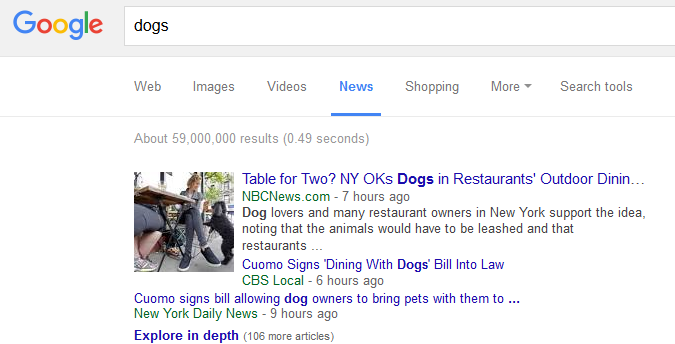 google dog news