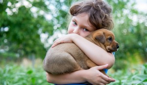 Study Finds Dogs May Help Prevent Diabetes In Children