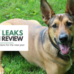 Puppy Leaks – A Year in Review 2015