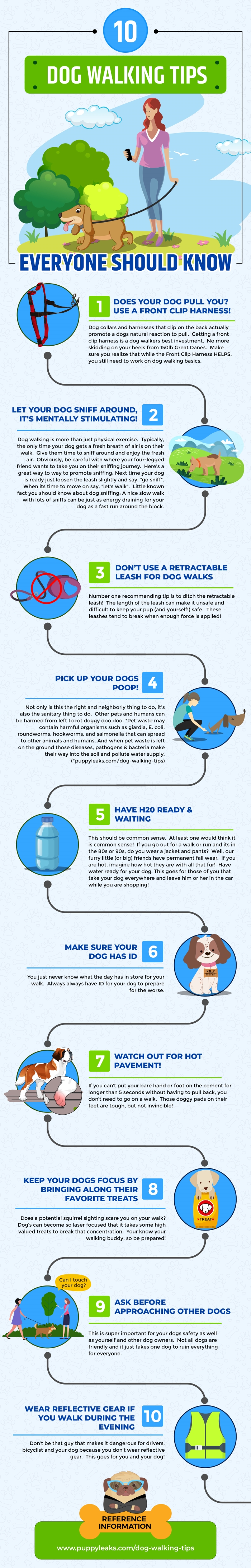 10 Dog Walking Tips Everyone Should Know