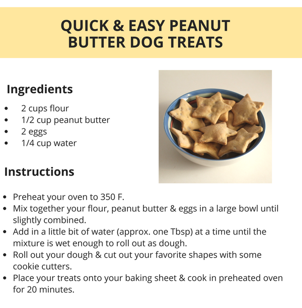 Quick Easy Peanut Butter Dog Treats Puppy Leaks