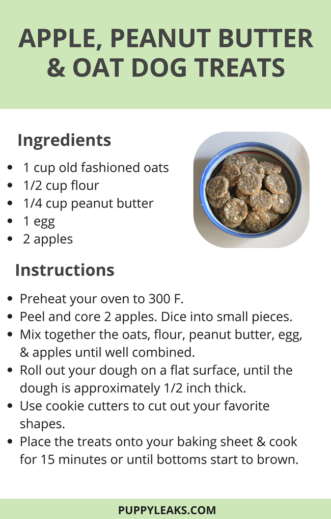 Apple, Peanut Butter & Oat Homemade Dog Treats