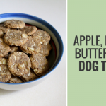 Quick & Easy Apple, Peanut Butter & Oat Dog Treats