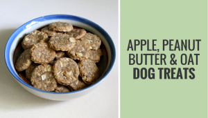 Apple, Peanut Butter & Oat Dog Treats