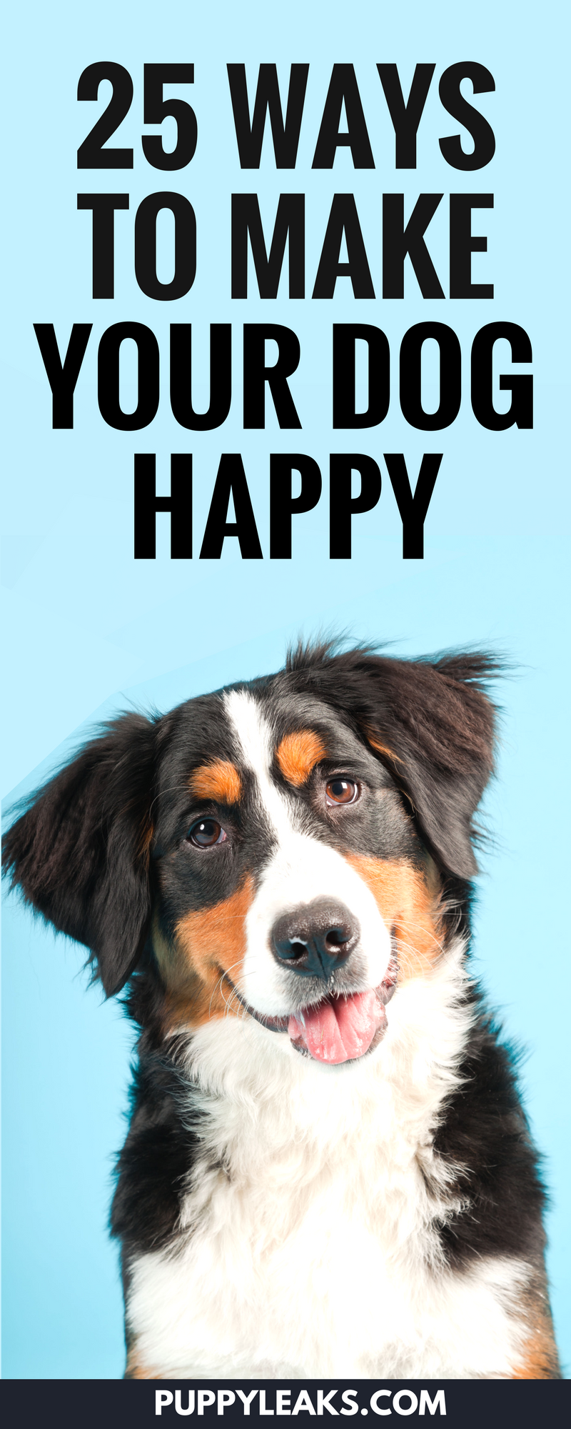 25 Ways to Make Your Dog Happy. Looking for some simple ways to enrich your dog's life? From playing some fun indoor games to letting your dog sniff out on their walk, there's plenty of easy ways to keep your dog happy. #dogs #dogtraining #dogtips #dogcare #dogadvice