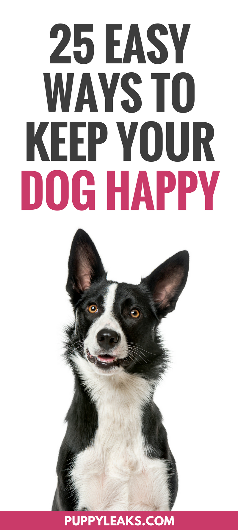 Looking for some simple ways to keep your dog happy? From letting your dog sniff around on your daily walk to making some DIY dog toys, here's 25 ways to make your dog happy. Fun indoor & outdoor games and activities to keep your dog happy, active, busy and entertained. Dog boredom buster ideas.