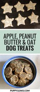 Apple & Peanut Butter Dog Treats