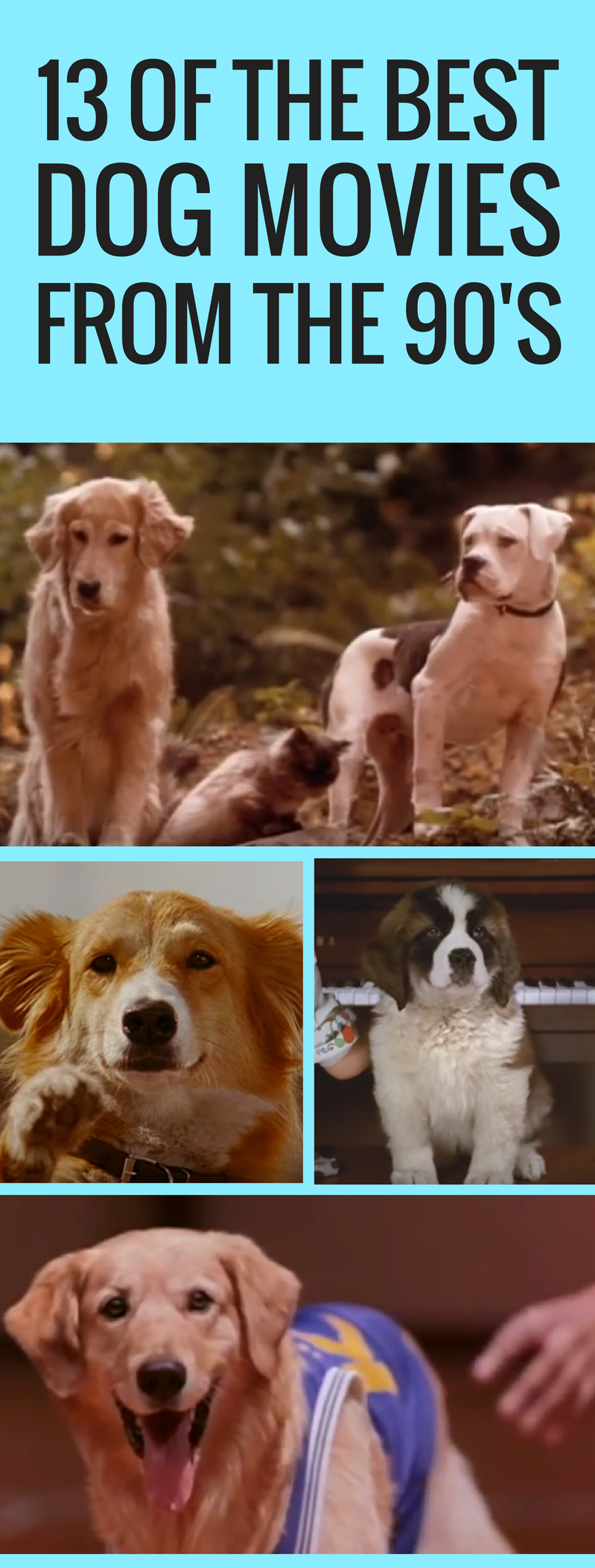 The 13 Best Dog Movies to Watch From the 90's