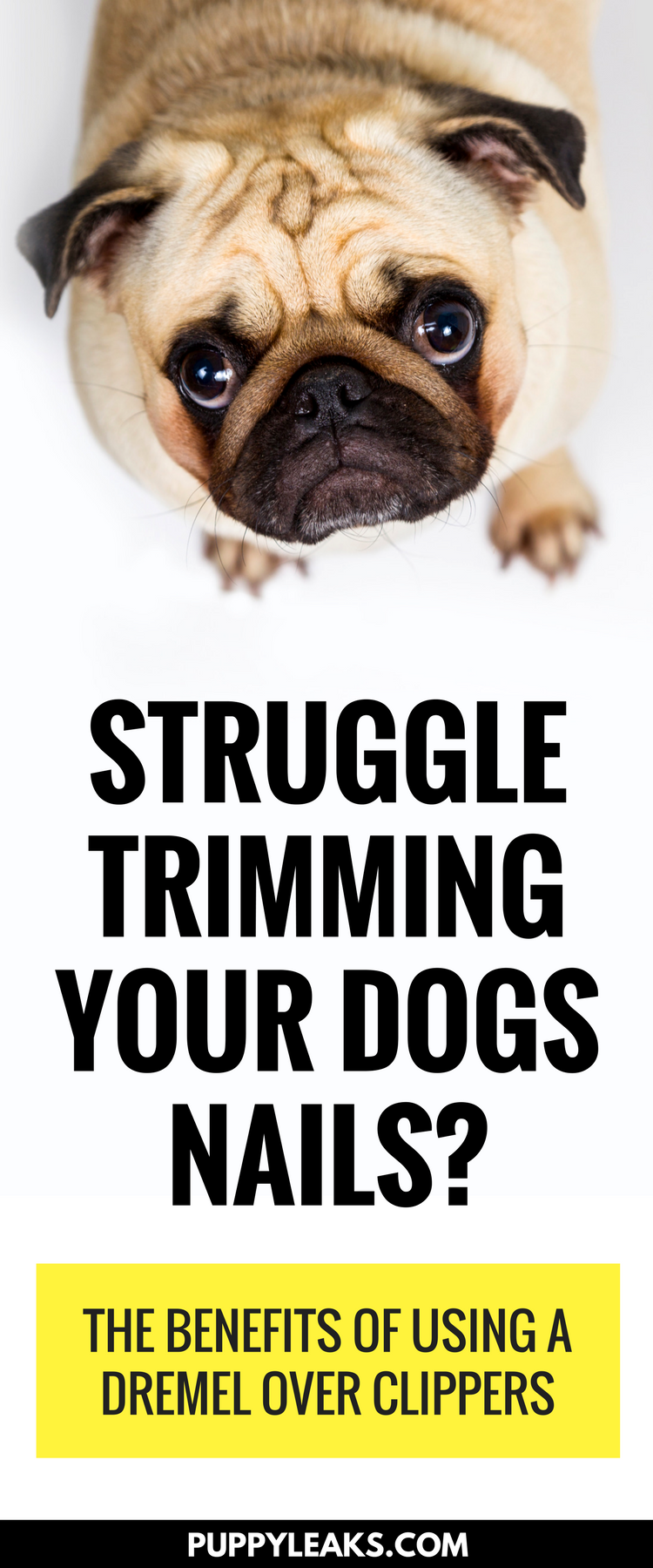Struggle trimming your dogs nails? The benefits of using a nail dremel over nail clippers.