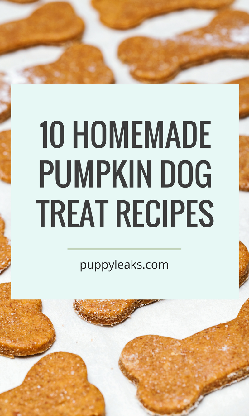 Homemade Dog Treats are so much easier to make than I would have ever thought a few years ago. For a while now, whenever the notion strikes me, I like to bake a couple of batches of dog treats for our dogs as a special little goodie.