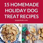 15 Homemade Holiday Dog Treat Recipes