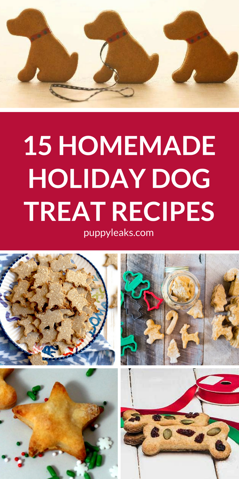 15 Homemade Holiday Dog Treat Recipes. Looking for something special to give your dog for the holidays? Make them one of these Christmas themed dog treat recipes. #dogs #dogtreats #dogdiy #dogtreatrecipes