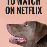 10 Dog Movies to Watch on Netflix