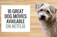 10 Great Dog Movies Available on Netflix
