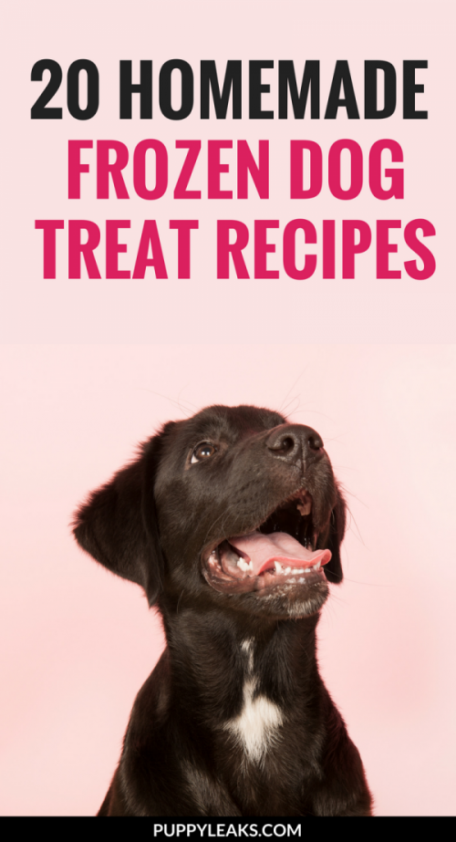 20 Homemade Frozen Dog Treat Recipes