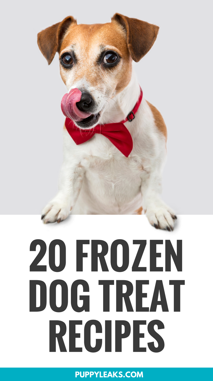 Looking for a simple way to help cool down your dog this summer and keep them busy? One of the easiest ways is to make them their very own frozen dog treats. There's plenty of dog friendly frozen treats to choose from, and I've put together a list of my favorites. Here's 20 homemade frozen dog treat recipes. #dogs #puppies #dogtreats #recipes