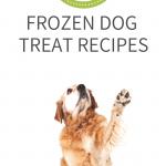Frozen Dog Treat Recipes