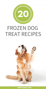 Frozen Dog Treat Recipes