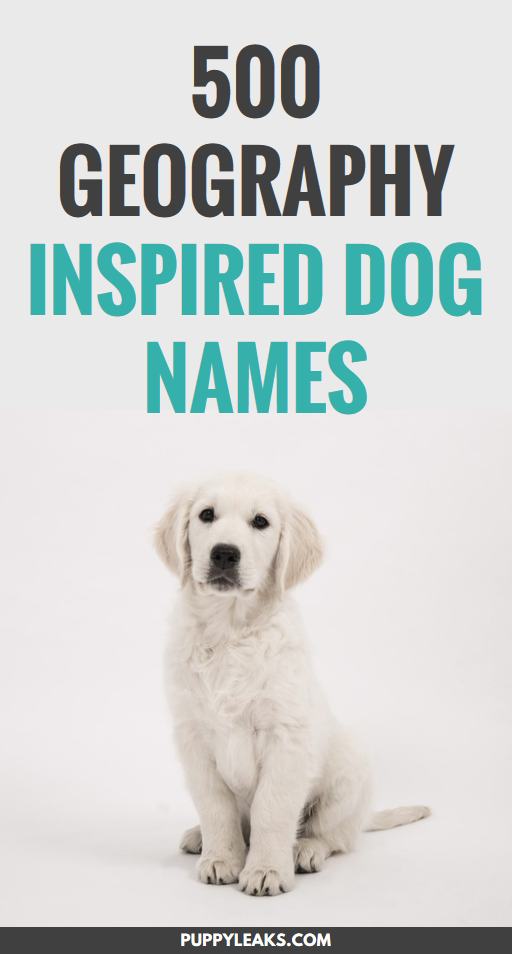Having trouble coming up with a name for your new pet? One of my favorite ways to come up with new names is to start with a theme, and when it comes to geography there's a lot of cool names to choose from. From world capitals like Oslo to the Hari river, here's 500 geography inspired dog names. #dogs #puppies #names