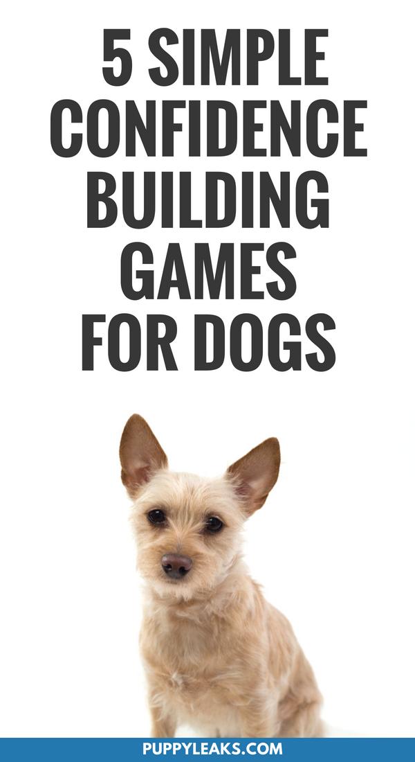 Dog Games Please