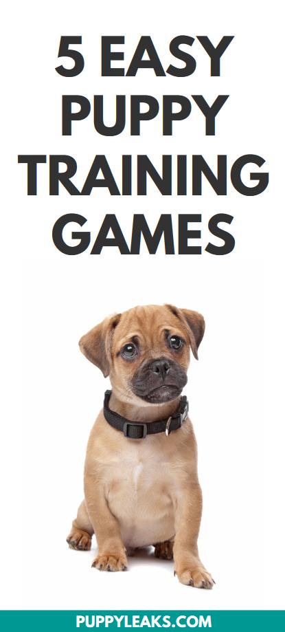 Puppy training games