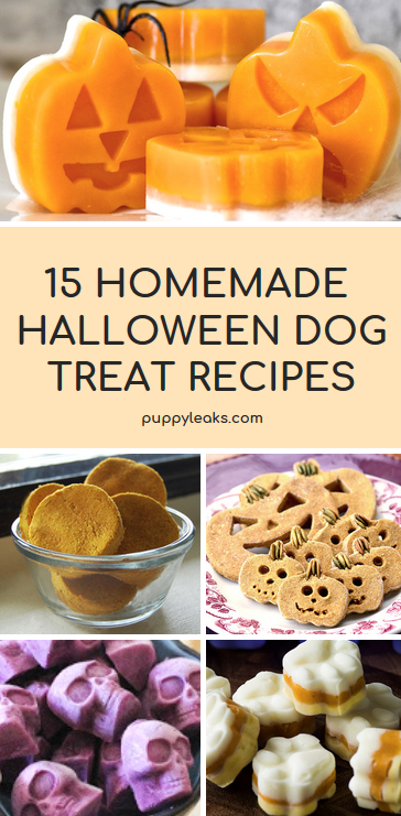 Looking for a simple way to celebrate Halloween with your dog? You can start by making them some of their very own Halloween inspired dog treats. From grain free recipes to frozen options, here's 15 homemade Halloween dog treat recipes. #dogs #puppies #dogtreats #dogtreatrecipes